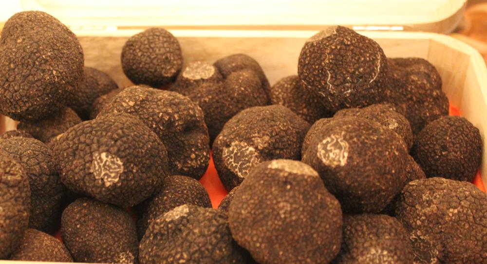 truffes ensemble tasty life magazine lifestyle equilibre